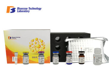 China High Sensitivity and Specificity Rat KIM-1 Sandwich Elisa Kit For Accurate Quantitative Detection supplier