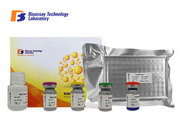 China Customized Rat ELISA Kit Mannma Binding Protein With 2 Hours Assay Time supplier