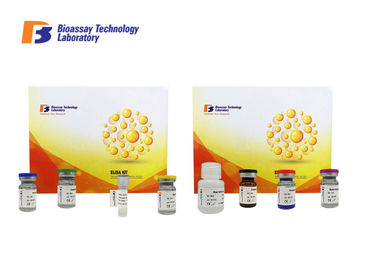 China Human ASMT Enzyme linked Immunosorbent Assay Kit With 2 Hours Assay Time supplier