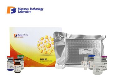 China Sandwich Type Enzyme Linked Immunosorbent Assay Test Kit Rat CK-MM With Oem Service supplier