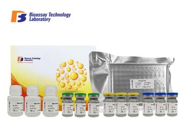 China A1AGP Bovine Enzyme Linked Immunosorbent Assay Elisa Kit 96 Wells With High Sensitivity And Specificity supplier