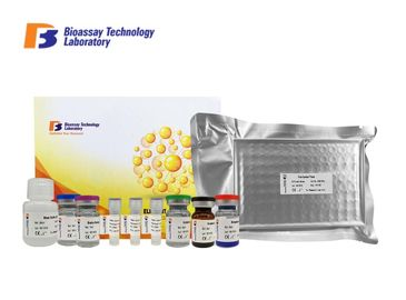China High Precision Sandwich Enzyme Assay Kits Human A Kinase Anchor Protein 3 supplier