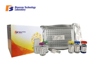 Customized Sortilin Human Elisa Kit 96 Wells , Sort1 Sandwich Elisa Kit