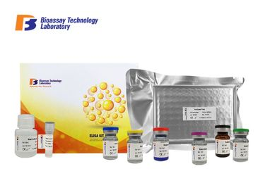China Beta - Hydroxybutyric Acid Bovine ELISA Kit 96 Wells High Specificity For Research factory
