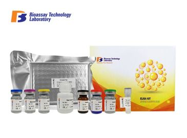 China High Sensitivity Porcine Test Kit / C - Telopeptide Of Type 1 Collagen Sandwich ELISA Kit factory