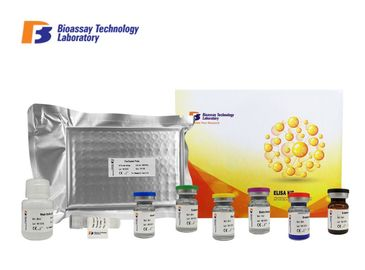 China Customized Porcine CTX-1 ELISA Test Kit C-Telopeptide Of Type 1 Collagen factory