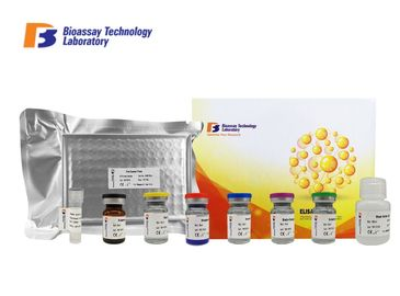Sandwich Porcine ELISA Kit Syndecan - 1 Customized With 2 Hours Assay Time