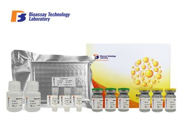 China 1.53ng/L Specificity Canine ELISA Kits Vasoactive Intestinal Peptide VIP ELISA factory