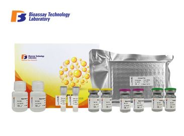 China Customized Canine TK1 Enzyme Linked Immunosorbent Assay Kit With Strong Sensitivity factory