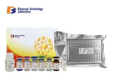 China Human Immunosorbent Sandwich Assay Kit 96 Wells AGBL3 With High Specificity factory