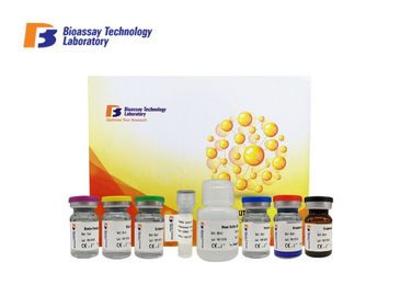 E6830Hu Human Sandwich Assay Kit GABA-B Immunoassays Test Kit OEM ISO9001