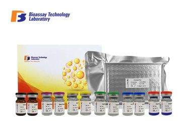China GABA-B Gamma Aminobutyric Acid B ELISA Kit 96 Wells / 48 Wells 1.05μG/Dl Sensitivity factory