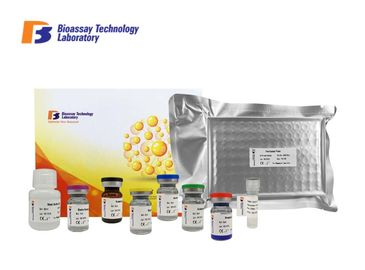 China High Sensitivity Human ELISA Kit Sandwich Test Method 2 - 8°C Storage For Research factory